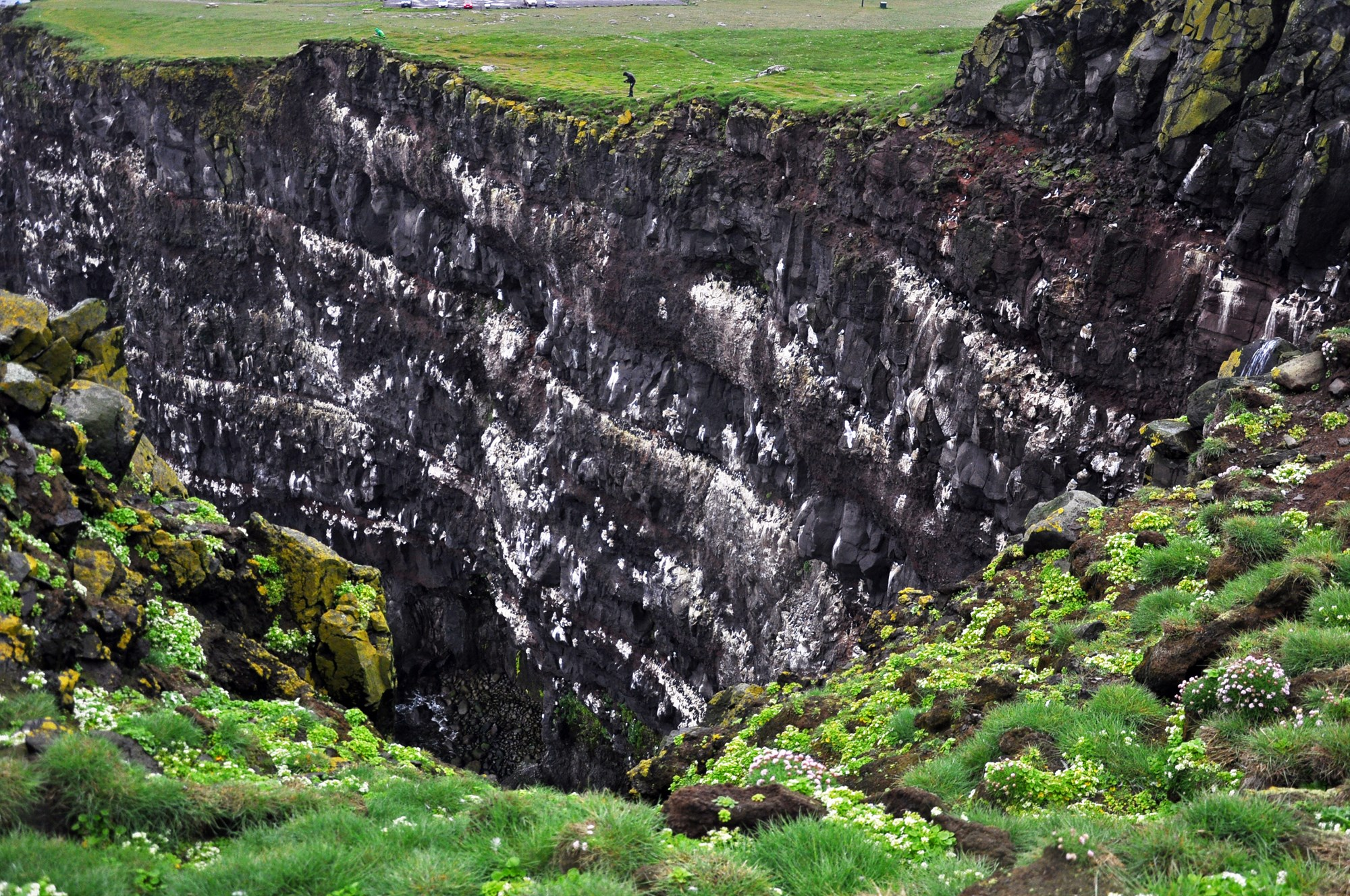 Latrabarg cliff in Iceland